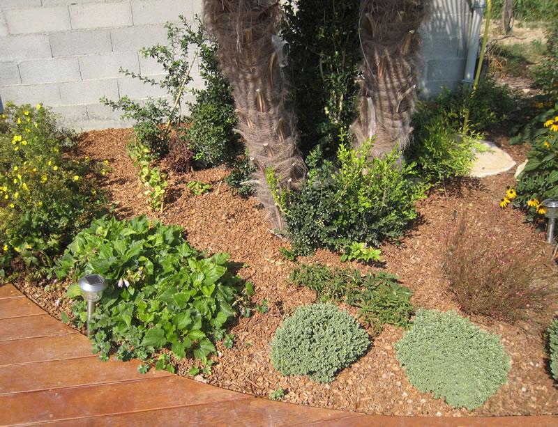 un jardin sans entretien ou presque jardinier conseil. Black Bedroom Furniture Sets. Home Design Ideas