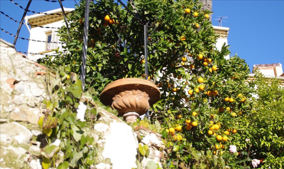 3 raisons de se d placer menton 06 la serre ciel for Conseil du jardinier