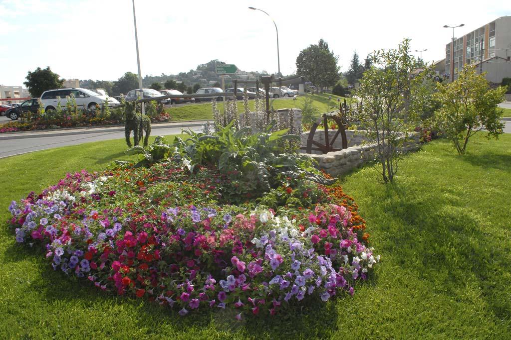 Al s 30 arbore une mine fleurie jardinier conseil for Jardinier conseil