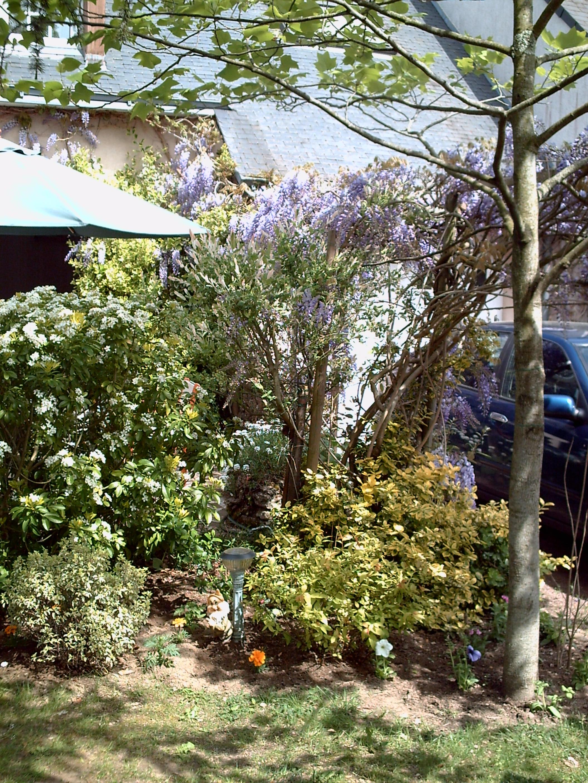 Jardin familial reposant sur nantes 44 jardinier conseil for Conseil du jardinier