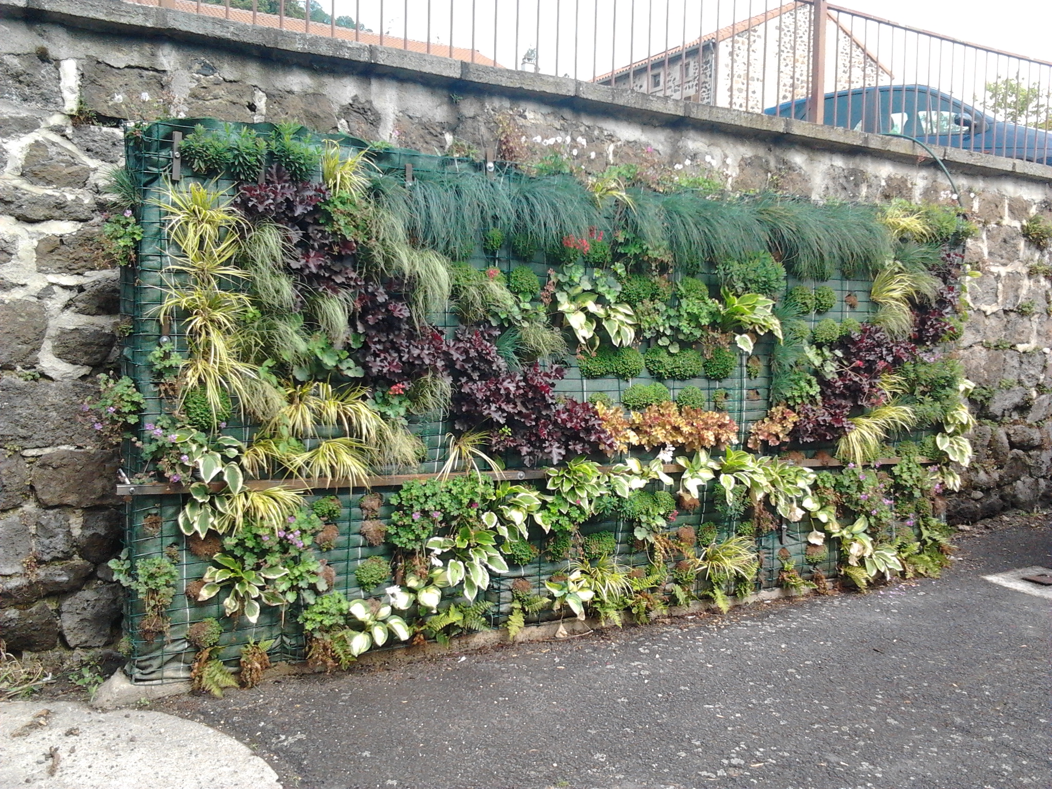 construction mur vegetal exterieur 28 images un mur v