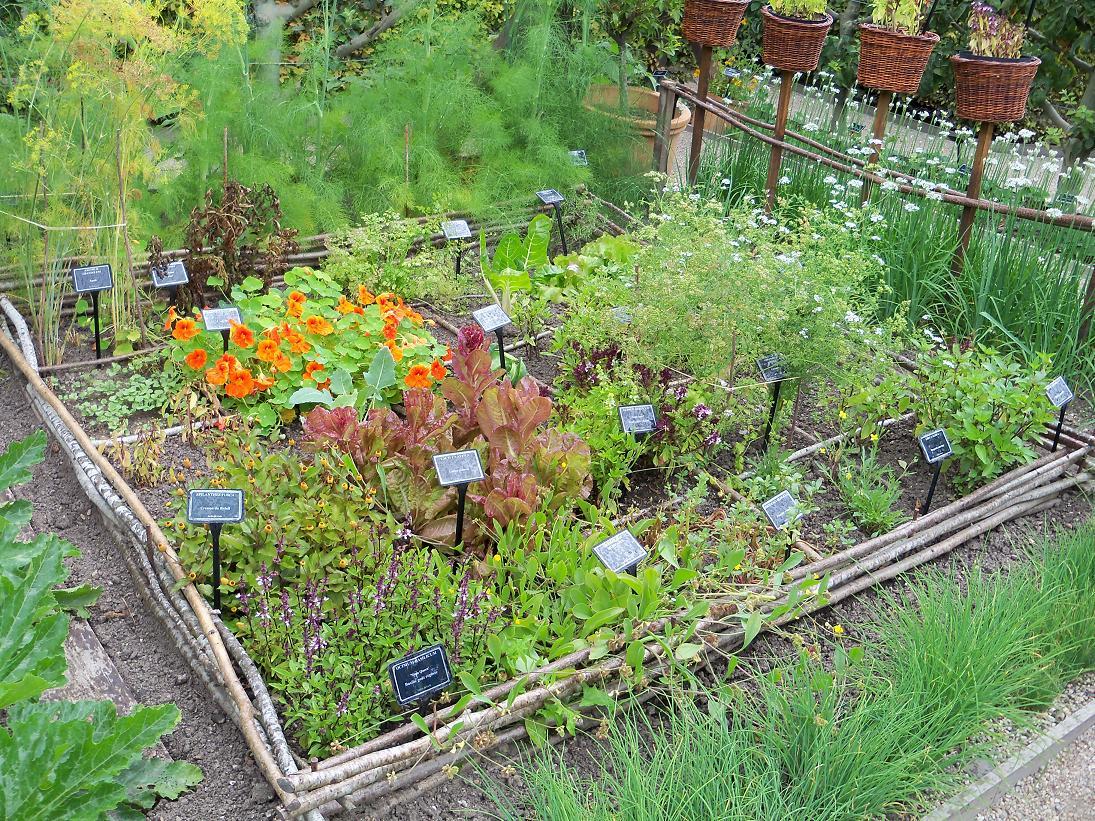 Cr er votre jardin des 5 sens jardinier conseil - Carre de jardin potager ...