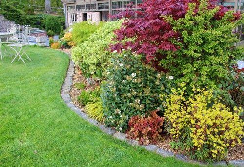 des id es pour r aliser un massif 4 saisons jardinier conseil. Black Bedroom Furniture Sets. Home Design Ideas