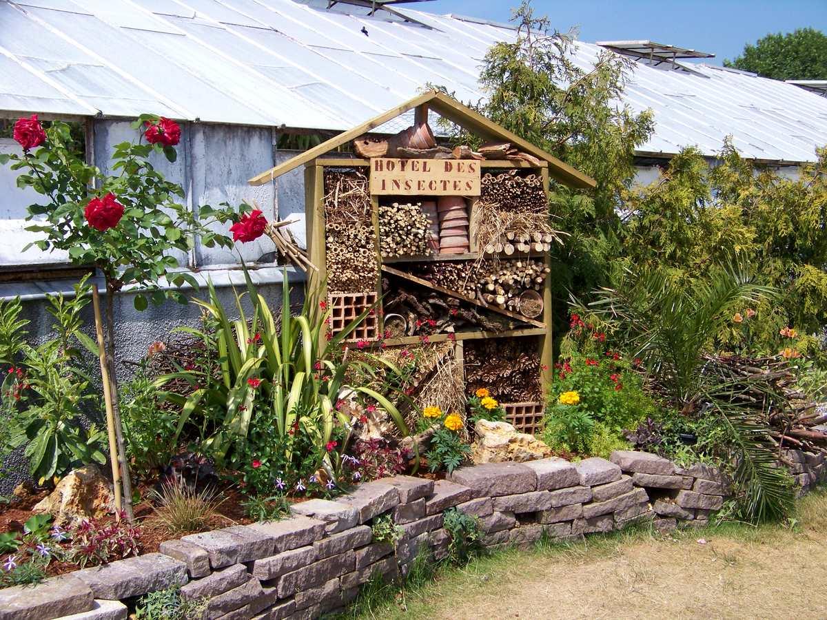 Cr er votre jardin des 5 sens jardinier conseil for Jardinier conseil