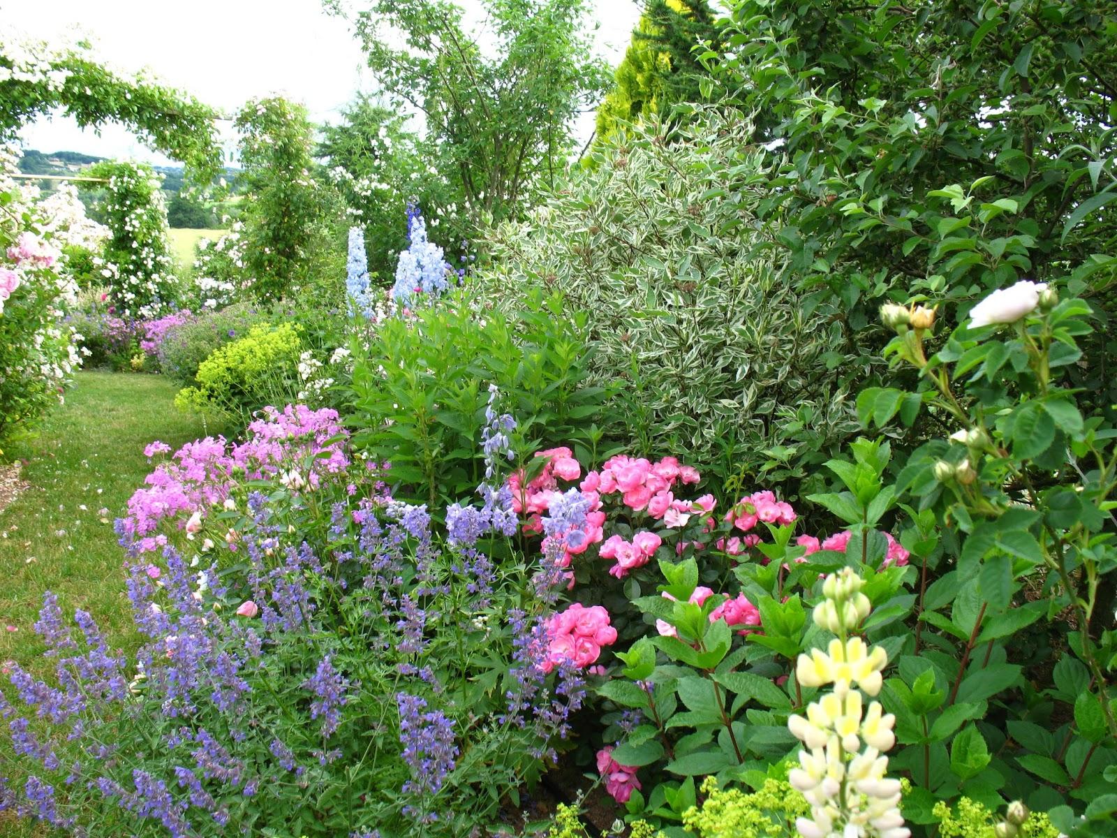 Des id es pour r aliser un massif 4 saisons jardinier conseil - Taille des hortensias fleurs ...
