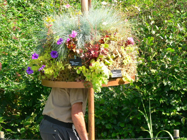 5 ambiances pour s inspirer au jardin jardinier conseil for Jardinier conseil
