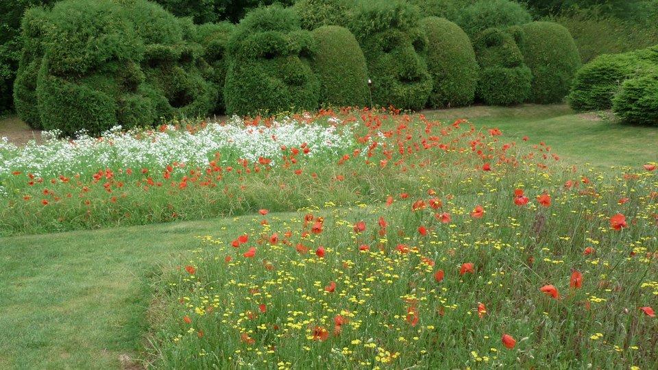 5 ambiances pour s inspirer au jardin jardinier conseil for Au jardin conseil