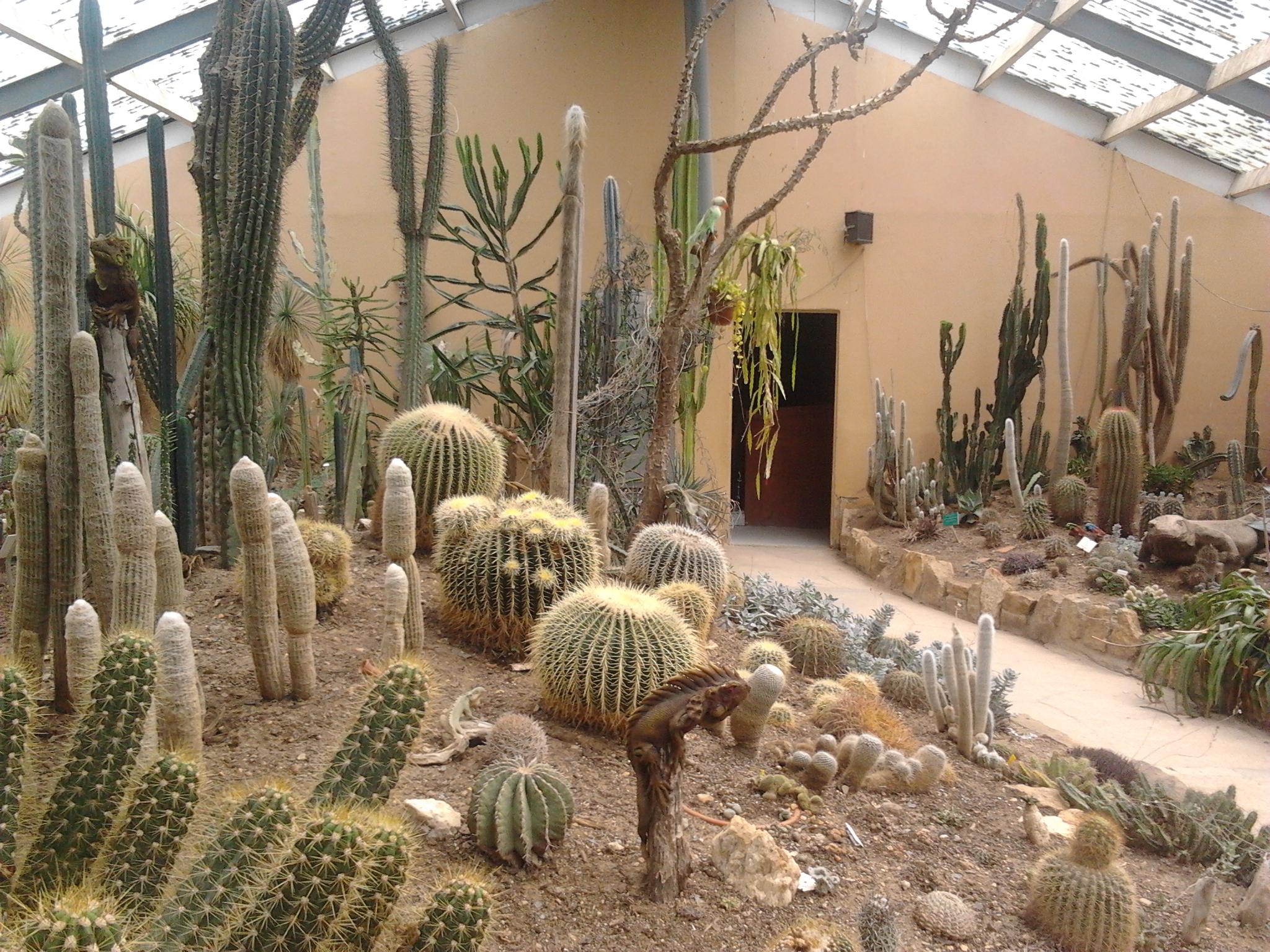 tropical parc saint jacut les pins 56 jardinier conseil. Black Bedroom Furniture Sets. Home Design Ideas