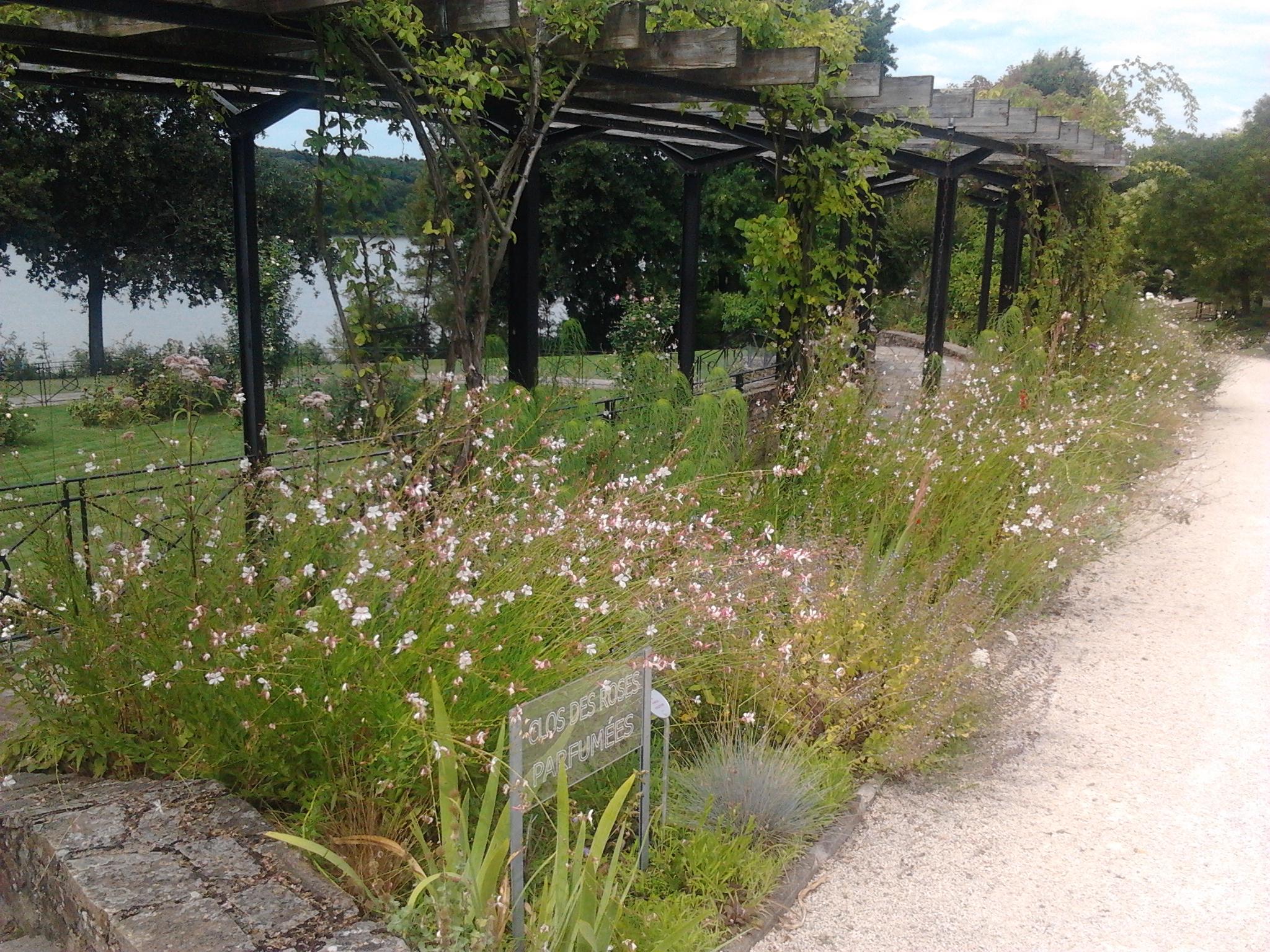 Parc floral de la beaujoire nantes 44 jardinier conseil for Jardinier paysagiste nantes
