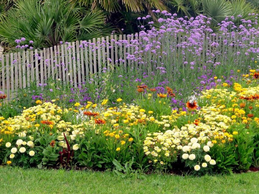 Harmonies de couleurs au jardin jardinier conseil - Massif de fleurs photos ...