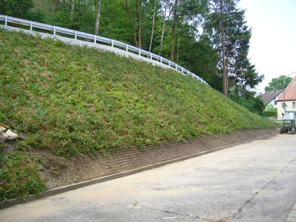 Imp riales couvre sol rustiques jardinier conseil - Plante couvre sol sans entretien ...